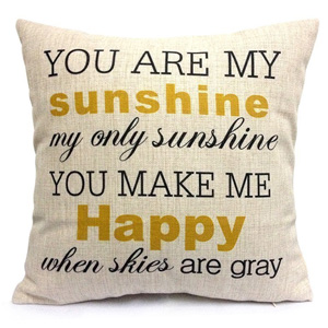 HOSL You Are My Sunshine Pillow Cover