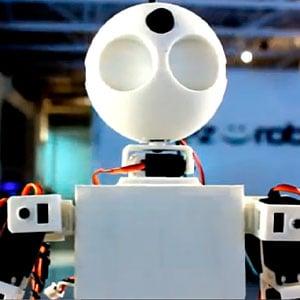 EZ Robot Revolution