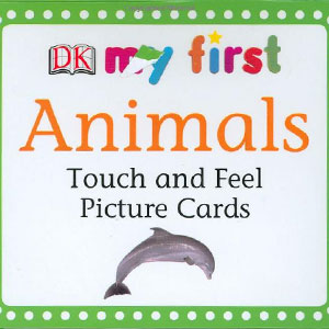 Touch & Feel Picture Cards