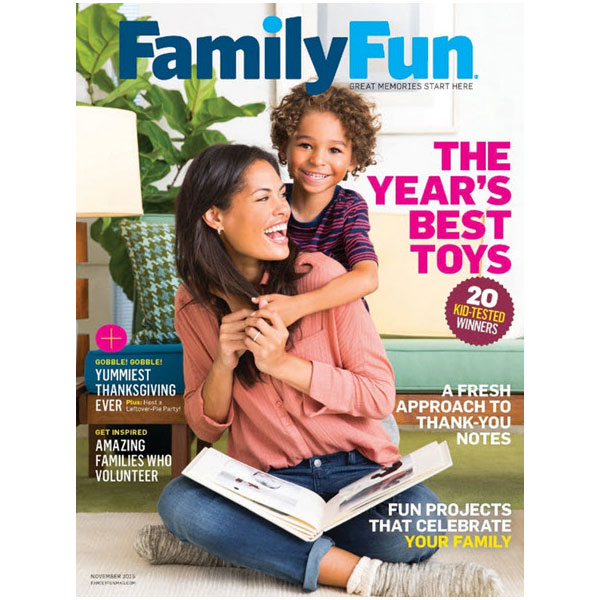 Family Fun Best Toys of 2015
