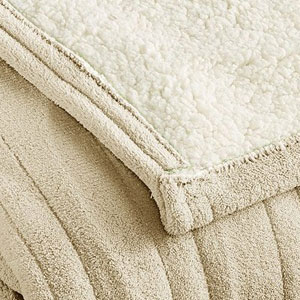 Biddeford Electric Heated Blanket
