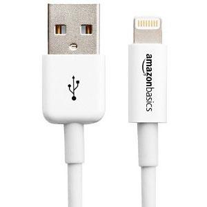 6ft AmazonBasics Lightning to USB Cable