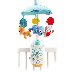 Fisher-Price Moonlight Meadow 2-in-1 Projection