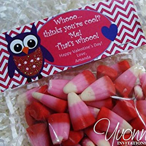Valentine Owl Treat Bags (12 Pack)