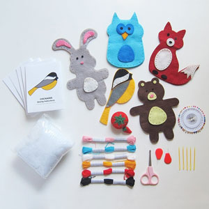 Craftsters Sewing Kit