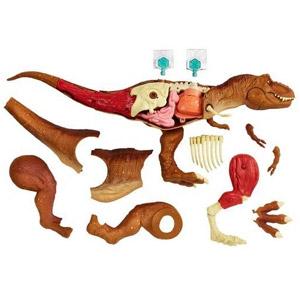 Jurassic World T-Rex Anatomy Kit