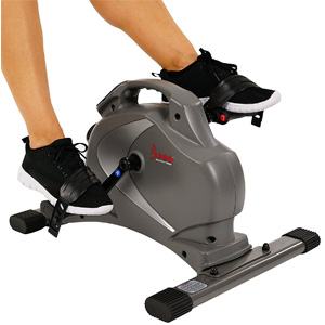 Sunny Mini Exercise Bike
