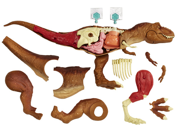 Jurassic World Tyrannosaurus Rex Anatomy Kit (FTF13)