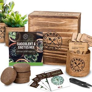 Cactus Succulent Seed Starter Kit