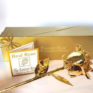 Forever Rose 24K Gold Dipped Real Rose