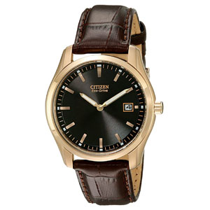 Citizen Mens Eco-Drive Stainless Steel Watch