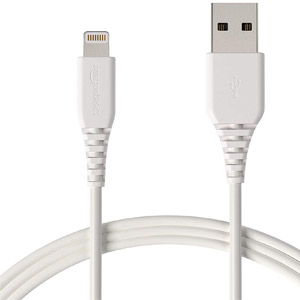 AmazonBasics 10ft Lightning Cable