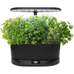 AeroGarden Bounty Basic Indoor Hydroponic Herb Garden
