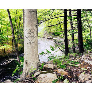 Riverbank Carved Tree Personalized Print