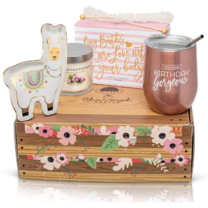 Happy Birthday Box for Women: Stainless Steel Tumbler, Bath Bomb Set, Scented Candle, Wine Stopper, & Candy Happy Birthday Package Birthday Gift Set