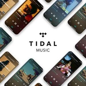 Tidal Hi-Fi Premium Music 12-Month Subscription
